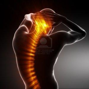 9162852-male-body-backbone-scan
